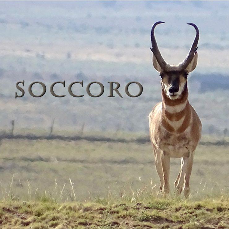 Soccoro